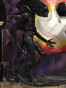NECA AVP 2 PACK Alien in package